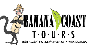 Banana Coast Tours