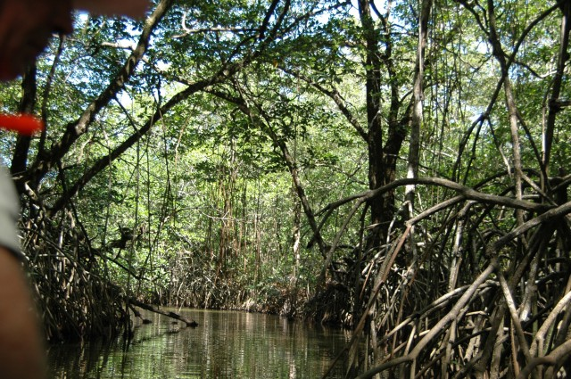 Guaimoreto-Lagoon-Exploration-4-640x425