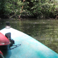 Guaimoreto Lagoon Kayak