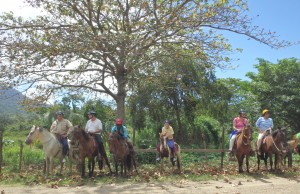 Horseback Riding Adventure & Nature Park